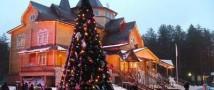 Новогодние праздники начались у елки в Великом Устюге
