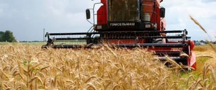 Ростовский филиал РСХБ выдал аграриям льготные кредиты на 4,8 млрд рублей