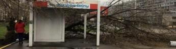 Мэр Москвы предупредил о новой опасности. Куда дальше пойдет ураган