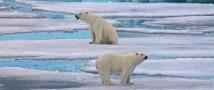 Норвежские исследователи прогнозируют климатический коллапс в Баренцевом море