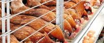 Казахстан отказался от российской курятины
