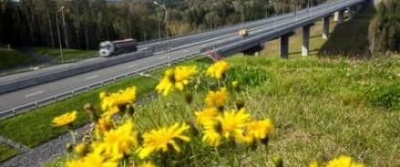 Протяженность федеральных трасс увеличится на 9 тысяч км
