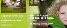 1 мая открылось голосование за Главное дерево страны – Российское дерево года 2019!