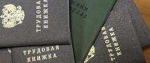 Трудовые книжки россиян оцифровали