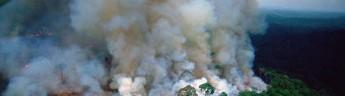Макрон призвал обсудить пожары в лесах Амазонки на саммите «Большой семерки»