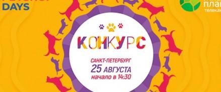 В Северной столице пройдет показ собачьих мод