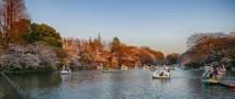 Парки Токио в «Зарядье». Международная конференция «ПаркЛаб» 15 и 16 октября 2019 года