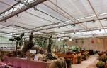 Крупнейшая в России выставка конопли в «Аптекарском огороде» продлена до 20 октября