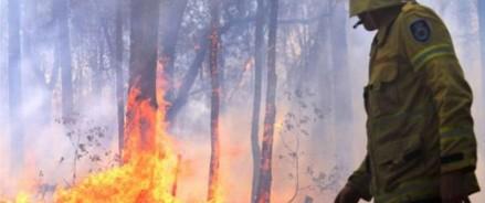 Беспрецедентные пожары бушуют в Австралии