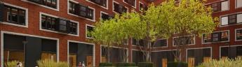 «Метриум»: Массовые апартаменты обогнали по росту цен квартиры
