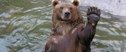 Московский зоопарк переходит на зимнее расписание