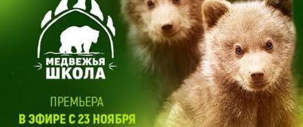 Медвежата, которые остались без мамы, обретут новую жизнь