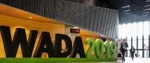 Владимир Путин прокомментировал запрет WADA по отношению России