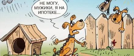 Похмелье, погоня за самолетом и клиент-собака:  новогодние байки от риелторов «Метриум»