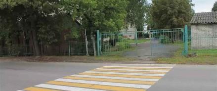 Московские активисты ОНФ просят власти решить вопрос с подтоплением пешеходного перехода около школы в Восточном Дегунино