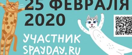 В акции SpayDay 2020 примут участие социально-ответственные ветеринарные клиники
