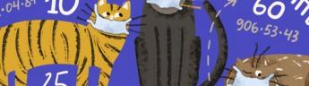 Котики VS коронавирус