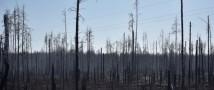 Чернобыльский пожар под контролем, заявляют украинские чиновники