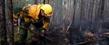 О лесопожарной обстановке в России в период с 13 по 19 апреля 2020 года