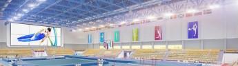 Центр мужской гимнастики построят в Воронеже к концу года