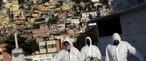 Коронавирус Бразилия: рекордное количество заболеваемости и смертности