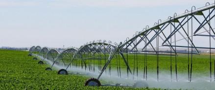В Татарстане наладили орошение 30 тысяч га сельхозугодий