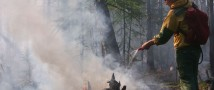 За апрель в 11 регионах ЦФО потушено 265 лесных пожаров. с 1 по 3 мая пожарной опасности подвержены 14 регионов ЦФО