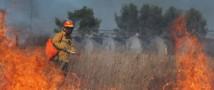 Прибывшие в Забайкальский край парашютисты-десантники Авиалесоохраны остановили лесной пожар у села Авдей