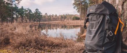 Авито: этим летом жители Санкт-Петербурга собираются в походы и на рыбалку
