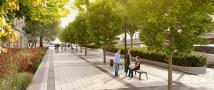 Единая зеленая ось района будет создана в Зюзино по программе реновации