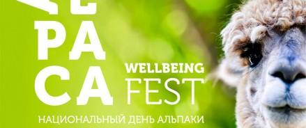 3аряд позитива и доброты – на летнем Alpaca Wellbeing Fest