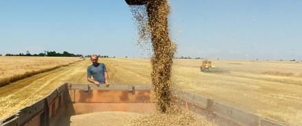 Аграрии Татарстана собрали второй миллион тонн зерна