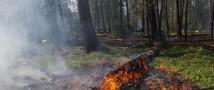 Парашютисты-десантники Авиалесоохраны вручную потушили на Чукотке 2 пожара более 60 тысяч га