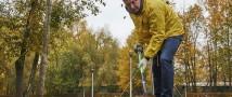 В 12 природных парках Москвы высадят 7,5 тысяч деревьев и 32 тысячи кустарников