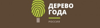 Выбираем Главное дерево страны — конкурс «Российское дерево года 2020»