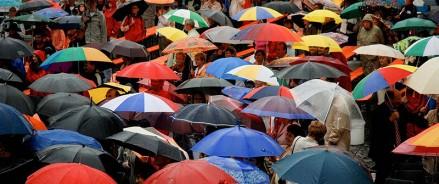 Дождевик или зонт: что выбирают петербуржцы этой осенью?