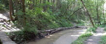 Парк в долине Чертановки в Москве приведут в порядок за 209 млн рублей