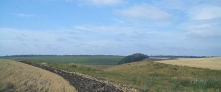 Ученые МГУ подтвердили: сельхозпродукция из Плавского радиоактивного пятна безопасна для человека