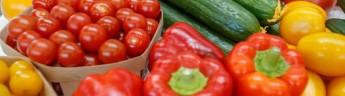 В Татарстане стартовала кампания по сбору благотворительной продовольственной помощи