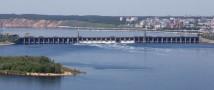 В Куйбышевское водохранилище в Татарстане выпустили 32 тысячи мальков стерляди