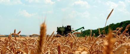 В Татарстанена приобретение минеральных удобрений аграрии получат 1 млрд рублей