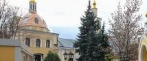 Москвичи смогут посетить виртуальные экскурсии по столице на портале «Я дома»