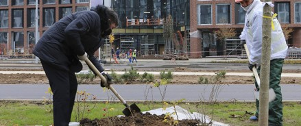 Рособоронэкспорт высадил деревья на входной аллее «Ростех-Сити»