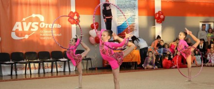 Центр художественной гимнастики в Екатеринбурге обойдется в 1,5 млрд рублей