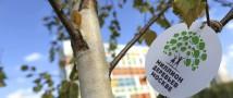 """Более 5 000 юных москвичей получили в подарок именные деревья по программе """"Наше дерево"""""""