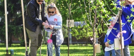 Новая Москва участвует в проекте «Наше дерево»