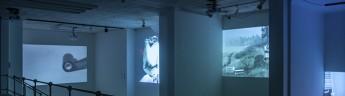 Выставка видеоарта VIDEOFORMA VIII продлевается до 12 февраля!