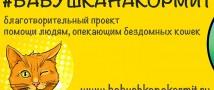 #БАБУШКАНАКОРМИТ: в Петербурге стартует новый проект, помогающий людям, помогающим кошкам