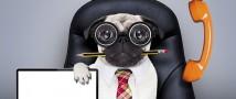 ProPersonnel: Где люди? Почему рынок испытывает дефицит талантливых руководителей