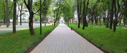 Сад «Сосновый» в Краснодаре благоустроят за 172 млн рублей